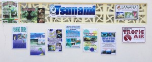 Tsunami Adventures Signs