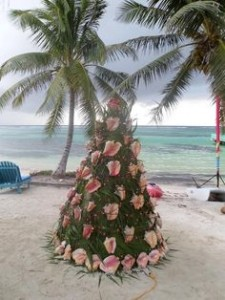 Conch Christmas Tree